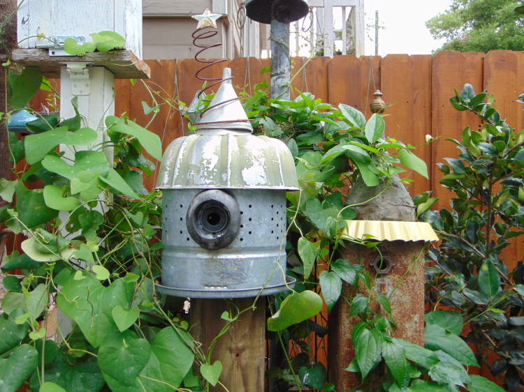 Loved these birdhouses