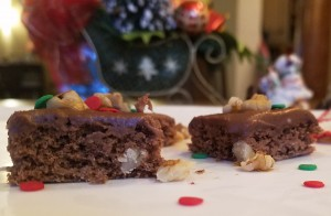 Cocoa Wheat Germ and Walnut Bars