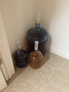 Cream ale in the 5 gallon carboy. Mead and Christmas Ale in the 1-gallon carboys.